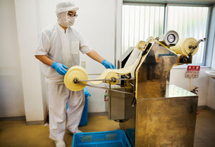 A Soba noodle factory.  Sheets of fresh noodle dough being passed through a large pressing machine.の写真素材 [FYI02255406]