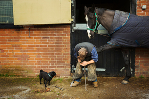 A farrier shoeing a horse, bending down and fitting a new horseshoe to a horse's hoof.の写真素材 [FYI02255712]