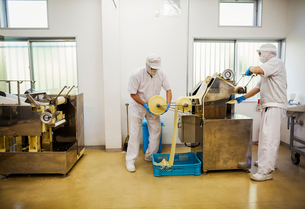 A Soba noodle factory.  Sheets of fresh noodle dough being passed through a large pressing machine.の写真素材 [FYI02255930]
