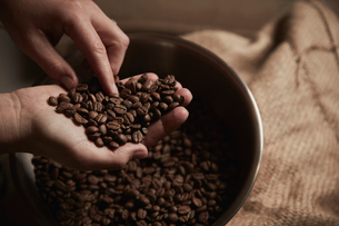 A coffee shop. A person holding a handful of fresh roasted coffee beans.の写真素材 [FYI02255944]