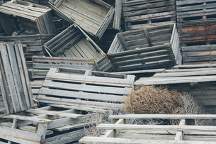 Pile of old and discarded wooden fruit crates, boxes for apple harvestの写真素材 [FYI02256123]
