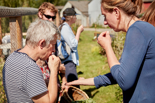 A group of people tasting seeds and plants on the foraging course.の写真素材 [FYI02256360]
