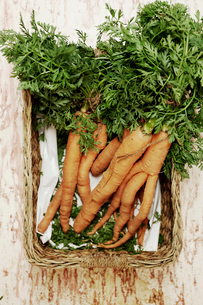 A shot of a bundle of carrots in a basket on a wooden surface, seen from above.の写真素材 [FYI02256487]