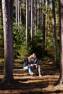 A couple seated on log in a pine forest.の写真素材 [FYI02256577]
