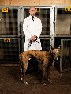 Dog handler standing in front of a cages in a greyhound track kennel, holding a brindle dog on a leaの写真素材 [FYI02256630]