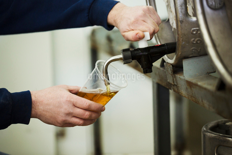 Man drawing foaming amber liquid, beer from a metal keg in a brewery for testing.の写真素材 [FYI02256749]