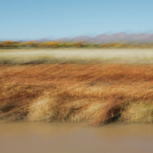 Blurred abstract of canal and autumn landscapeの写真素材 [FYI02256957]