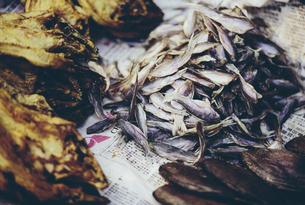 The Damnoen Saduak Floating Market, seafood for sale at floating marketの写真素材 [FYI02256998]