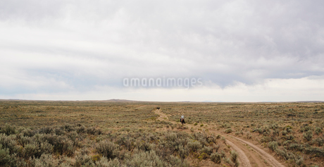 A rider on a dirt road riding through a flat rural landscape.の写真素材 [FYI02257171]