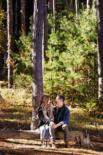 A couple seated on log in a pine forest.の写真素材 [FYI02257176]