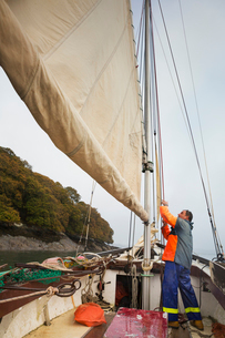 Traditional sustainable oyster fishing. A fisherman on his sailing boat by the mast.の写真素材 [FYI02257271]