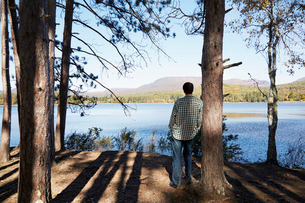 A man standing in the shade of pine trees looking out over a lake and the mountain and forest landscの写真素材 [FYI02257283]