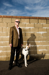 Man wearing a suit standing in front of a yellow brick wall, holding a white greyhound on a lead.の写真素材 [FYI02257324]