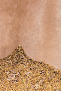 Autumn leaves heaped up in a corner by a building.の写真素材 [FYI02257344]