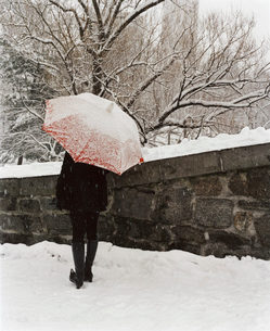 A person with an umbrella up walking along a path in a city park.の写真素材 [FYI02257413]