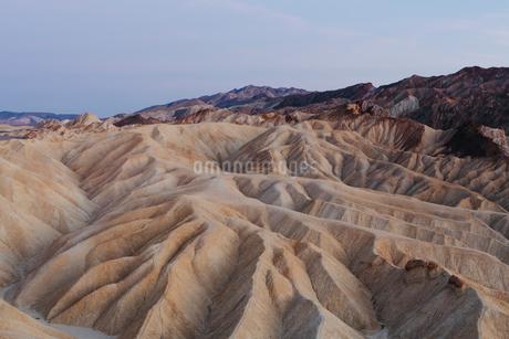 Zabriskie Point at dawn, Death Valley National Park, USA.の写真素材 [FYI02257419]