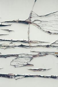 Peeling paint on wallのイラスト素材 [FYI02257446]