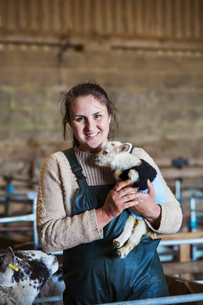 Woman standing in a barn, holding a newborn lamb dressed in a knitted jumper.の写真素材 [FYI02257715]