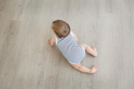 High angle view of baby boy wearing striped onesie crawling across hardwood floor.の写真素材 [FYI02258056]