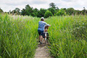 Rear view of woman pushing bicycle along path through tall grass.の写真素材 [FYI02258916]