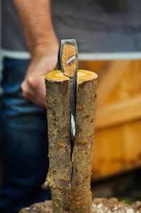 A wood carver splitting small log of wood in half with an axe.の写真素材 [FYI02258989]