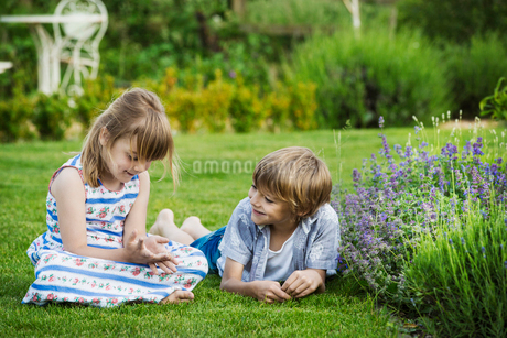 A girl sitting on the grass talking to her brother lying beside her on a lawn in a garden.の写真素材 [FYI02259005]
