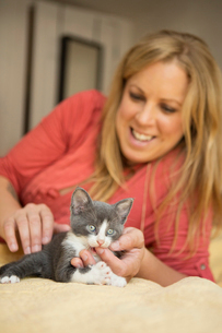 A woman with a small grey and white kitten.の写真素材 [FYI02259056]