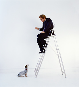 Businessman wearing dark suit sitting indoors on top of a ladder, teaching dog sitting on floor.の写真素材 [FYI02259114]