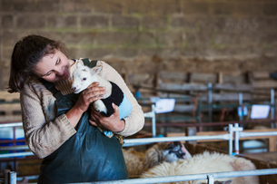 Woman standing in a barn, holding a newborn lamb dressed in a knitted jumper.の写真素材 [FYI02259386]