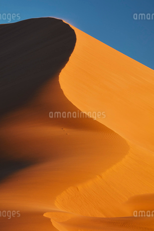Sand dune shifting in the wind.の写真素材 [FYI02259490]