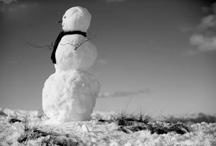 Side view of snowman with scarf and twigs as arms.の写真素材 [FYI02259540]