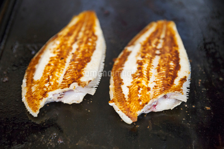 High angle close up of two grilled fillets of fish.の写真素材 [FYI02259556]