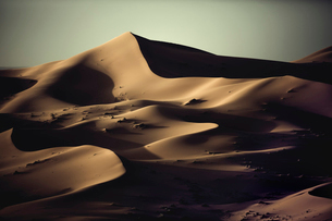 Sand dunes in wave shapes, formed by the action of wind and weather, in the desert.の写真素材 [FYI02259775]