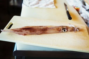 High angle close up of a squid on chopping board  on counter at Japanese sushi restaurant.の写真素材 [FYI02260137]
