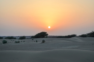 Sunset over the desert, Rajasthan, India.の写真素材 [FYI02260176]