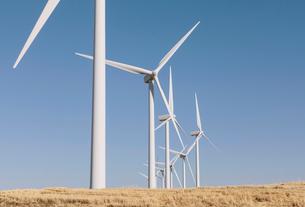 Tall wind turbines in open country farmland in Washington.の写真素材 [FYI02260249]