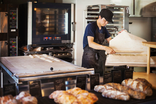 Man working in a bakery, preparing large tray with dough for rolls, oven in the background.の写真素材 [FYI02260396]