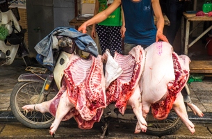 Close up of man transporting three pig carcasses on an old motor-scooter.の写真素材 [FYI02260501]