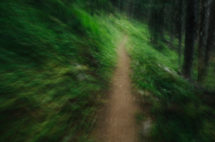 Blurred abstract of hiking trail through lush, green forest in Okanogan County, Washington.の写真素材 [FYI02260550]