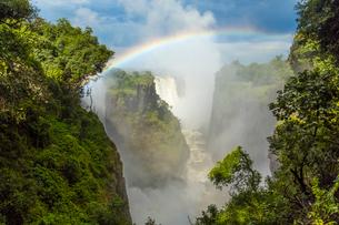 High angle view of waterfall cascading down overgrown rocks, single rainbow.の写真素材 [FYI02260613]
