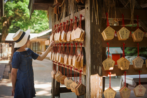 Young woman wearing blue dress looking at wooden fortune telling plaques at Shinto Sakurai Shrine, Fの写真素材 [FYI02260845]