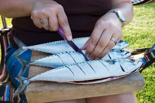 A woman scoring the skin of three fresh mackerel fish on the slab being prepared for cooking.の写真素材 [FYI02260862]