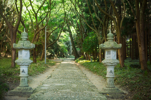 Path at Shinto Sakurai Shrine, Fukuoka, Japan.の写真素材 [FYI02260904]