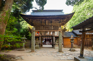 Exterior view of Shinto Sakurai Shrine, Fukuoka, Japan.の写真素材 [FYI02260952]