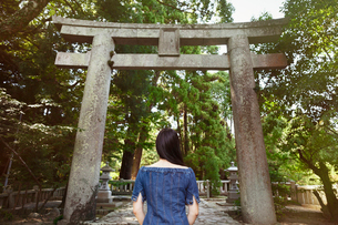 Rear view of young woman wearing blue dress standing at Shinto Sakurai Shrine, Fukuoka, Japan.の写真素材 [FYI02260962]