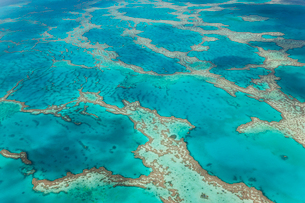 Aerial view of turquoise reef in the Pacific Ocean.の写真素材 [FYI02261120]