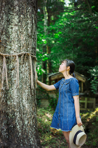 Young woman wearing blue dress touching shimenawa ropes on tree at Shinto Sakurai Shrine, Fukuoka, Jの写真素材 [FYI02261167]