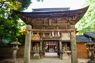 Exterior view of Shinto Sakurai Shrine, Fukuoka, Japan.の写真素材 [FYI02261223]