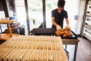 Man working in a bakery, wearing oven gloves, placing freshly baked rolls on a tray.の写真素材 [FYI02261253]