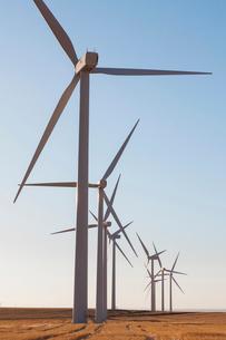 Tall wind turbines in open country farmland in Washington.の写真素材 [FYI02261391]